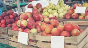 Ukraina: sadownicy obawiają się niskich cen za jabłka wczesnych odmian