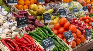Ekonomista FAO: Polska nie może lekceważyć konkurencji ogrodniczej na Wschodzie