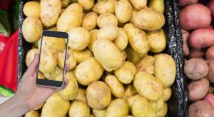 Sprzedaż ziemniaków on-line sposobem na pominięcie pośredników