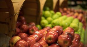 Czechy: Ceny jabłek znacznie wzrosły w czerwcu