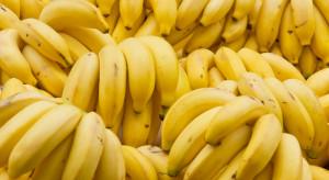 Chłodzenie bananów zabija ich smak i aromat