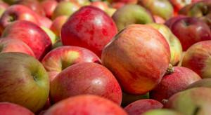 Kostaryka otwarta na polskie jabłka