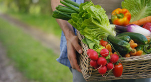 Rolnicy sprzedadzą swoje produkty na nowej e-platformie zakupowej