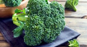 Brokuły, kurkuma - zalecane prewencyjnie przeciw nowotworom (wideo)