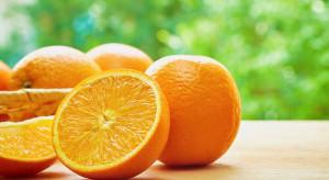 Naukowcy: Jedna pomarańcza dziennie wstrzymuje degenerację plamki żółtej
