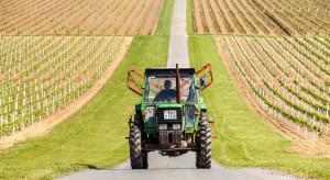 Trudna droga Chorwacji do konkurencyjnego rolnictwa