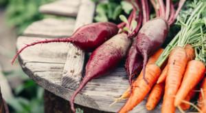 Zespół doradzający MRiRW postuluje obniżenie standardów żywności eko