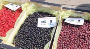 Holding spożywczy pomoże branży owocowo-warzywnej?