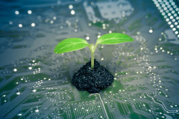 Sztuczna inteligencja a tworzenie idealnych roślin - wywiad z ekspertem AgriTech Hub
