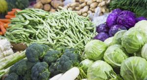Pogoda i sezon urlopowy a ceny warzyw na rynkach hurtowych (analiza)