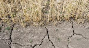 Nowelizacja ustawy z korzystniejszymi warunkami dla ubezpieczeń od suszy