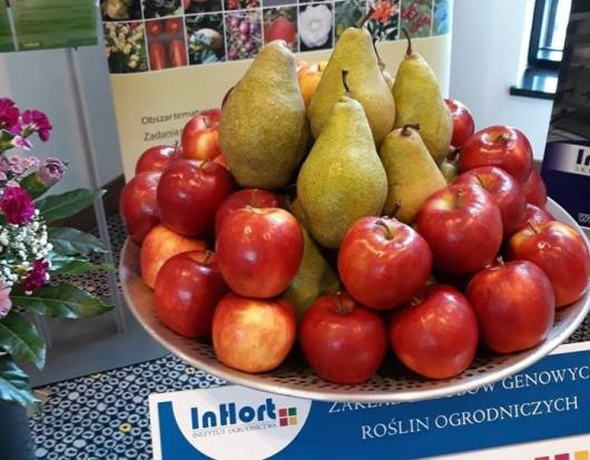 Rusza projekt BioSafeFood czyli produkcja owoców i warzyw z użyciem biopreparatów