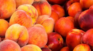 Węgry: Niedobór brzoskwiń i nektaryn spowoduje wzrost cen