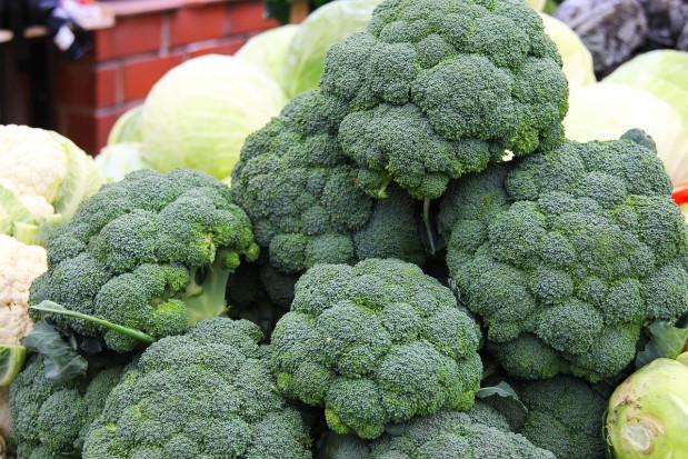 Trudny sezon dla producentów warzyw kapustnych z Wielkiej Bytanii