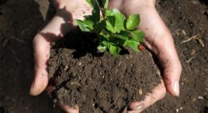 Bułgaria: powierzchnia upraw ekologicznych wzrosła ponad trzykrotnie w ciągu dwóch lat