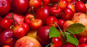 Ukraina prowadzi aktywne prace nad otwarciem nowych rynków dla owoców