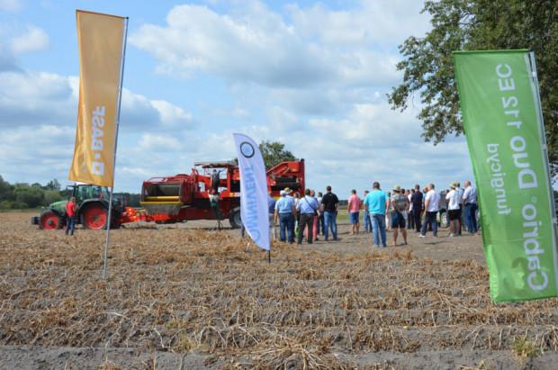 Technologia ochrony ziemniaka na Agro Akademii BASF