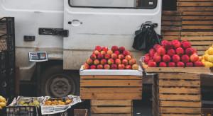 Bronisze: Dostępność owoców bardzo duża, jednak brak jest kupujących