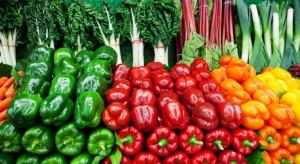 Minister rolnictwa: Polski eksport żywności wyniesie w tym roku ponad 28 mld zł