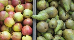 Biedronka: 99% jabłek i gruszek w naszych sklepach pochodzi od polskich dostawców