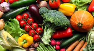 Rynek warzyw w ostatnim kwartale - analiza ekspertów IERiGŻ