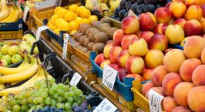 Analiza IERiGŻ: Sytuacja na rynku owoców