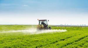 Koniunktura w rolnictwie - analiza eksperta IERiGŻ
