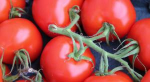 Eksporterzy z Białorusi i Polski nie chcą kupować ukraińskich pomidorów