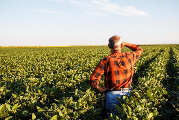 Pesymistyczne oceny 2018 roku przez rolników. Tak negatywnie nie było od 2015 r.