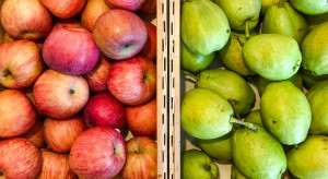 IERiGŻ: Średnie ceny jabłek na rynkach hurtowych we wrześniu niższe o 44%