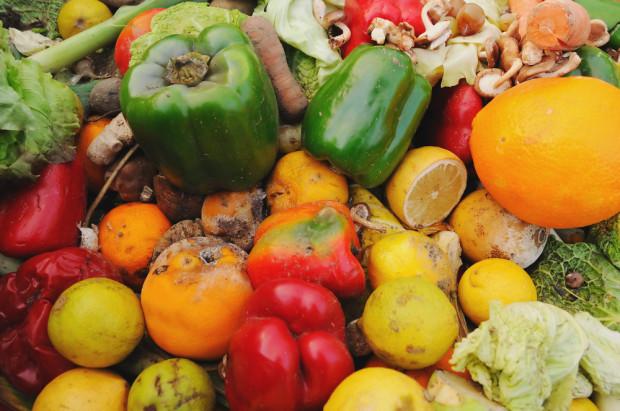 Deloitte: Polska w czołówce państw UE marnujących najwięcej żywności