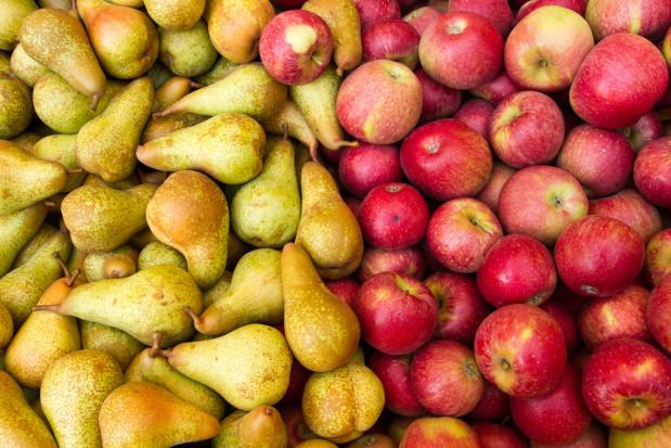 WAPA: prognoza zbiorów dla europejskich jabłek i gruszek nieznacznie w dół