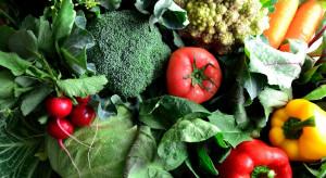Rosja: W ciągu 5 lat produkcja rolna wzrosła o ponad 20%
