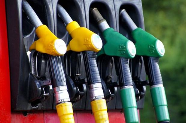 Analitycy: ceny oleju napędowego i autogazu wyhamują, a benzyna powinna stanieć
