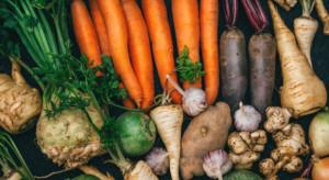 Ukraina: Tegoroczne zbiory warzyw będą wyższe