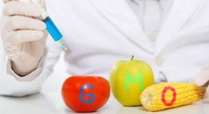 Ardanowski: Przyjmiemy ustawę dot. znakowania żywności wolnej od GMO