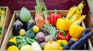 Ukraina zwiększa eksport owoców i warzyw do UE