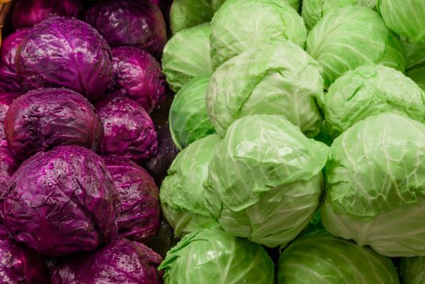 Niemcy: Słabe plony kapusty głowiastej wpływają na wzrost ceny