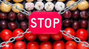 Zatrzymano Ukraińca, który reeksportował do Rosji owoce i warzywa objęte embargiem