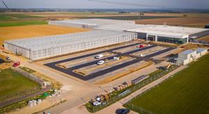 Firma BASF otworzyła nowe centrum hodowli ogórków w Nunhem