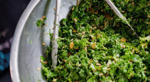 Niemieccy naukowcy: Badane sałaty w opakowaniach zawierały bakterie
