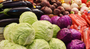 Bronisze: Ceny warzyw znacznie wyższe w porównaniu z ubiegłym sezonem
