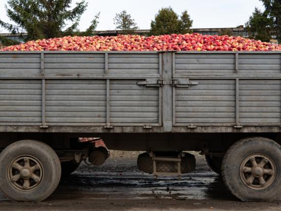 GITD: Kary dla przeładowanych ciężarówek przewożących jabłka