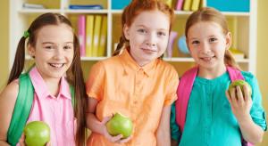 Holenderskie szkoły promują wśród uczniów spożycie krajowych jabłek