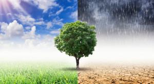 Ekspert o zmianach klimatu w Polsce: ekstremalnie ciepłe lata, deszczowe zimy