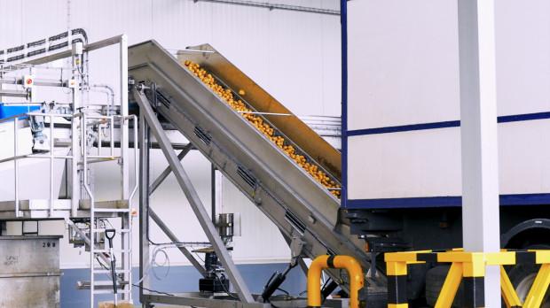 PepsiCo umacnia pozycję głównego odbiorcy ziemniaka chipsowego w Polsce