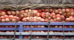 Protesty we Francji ograniczają hiszpański eksport owoców i warzyw do UE