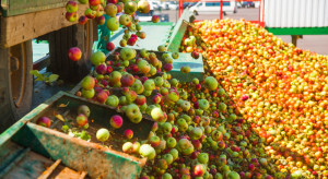 MRiRW: Przelano pierwszą transzę wypłaty za skup jabłek przez firmę Eskimos