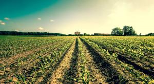 Polskiemu rolnictwu potrzebne jest unijne wsparcie