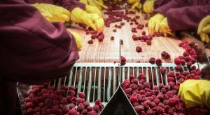 Ukraińscy rolnicy otrzymują dotacje na przetwórstwo owoców